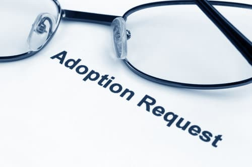 Looking to Adopt? Prepare for New Beginnings.