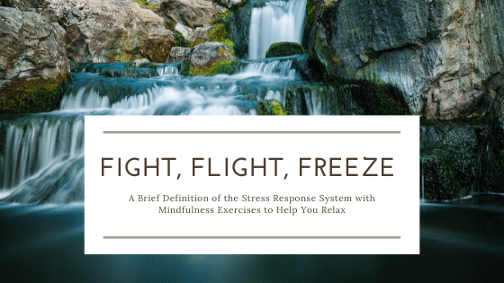 What is Fight, Flight, Freeze? A Brief Definition of the Stress Response System with Mindfulness Exercises to Help You Relax